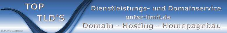 Domain-Hosting-Homepagebau